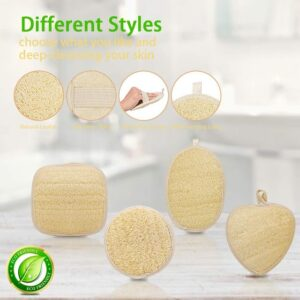 Egyptian Loofah Pads Wholesale Supplier