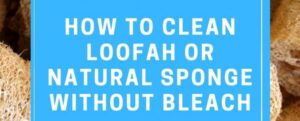How to clean a Loofah   Egyptian Luffa Sponges Wholesale Supplier
