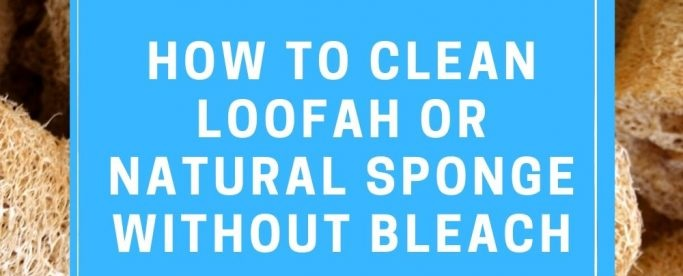 How to clean a Loofah | Egyptian Luffa Sponges Wholesale Supplier
