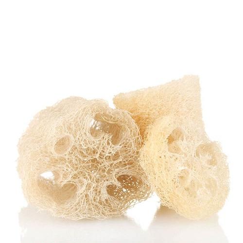 raw loofah wholesale