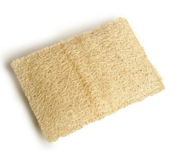 Rectangle Kitchen Loofah Scrubber   Cute Eve Egyptian Luffa Sponges Supplier